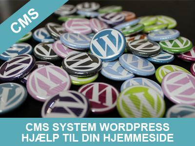 cms system hjælp til din wordpress hjemmeside fra Wolfdesign