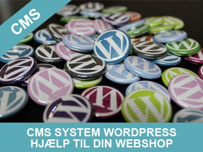 cms system hjælp til din wordpress webshop fra Wolfdesign