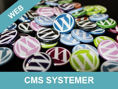 Mangler du hjælp og vejledning til CMS systemer - få den hos Wolfdesign