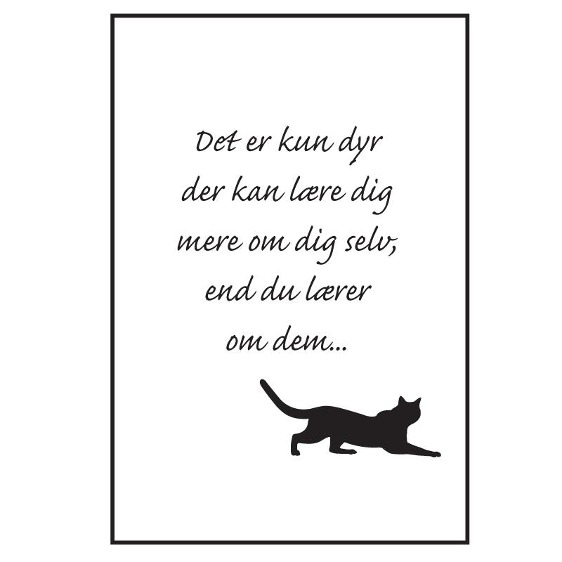 Katten kan - Katte plakat fra Wolfdesign
