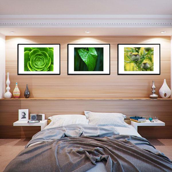 Green nature - 3 grønne fotogrsfier fra Wolfdesign - plakater af natur