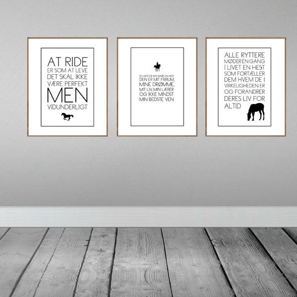 Heste sampack - 3 heste tekst plakater fra Wolfdesign