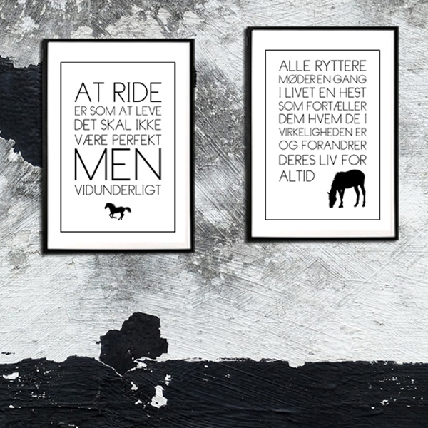 Oplevelser mellem hest og rytter