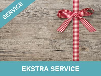 ekstra service fra wolfdesign alt i hjemmesider, shops og grafik